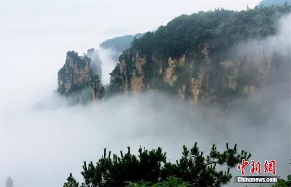 张家界武陵源雨后壮美云海景观